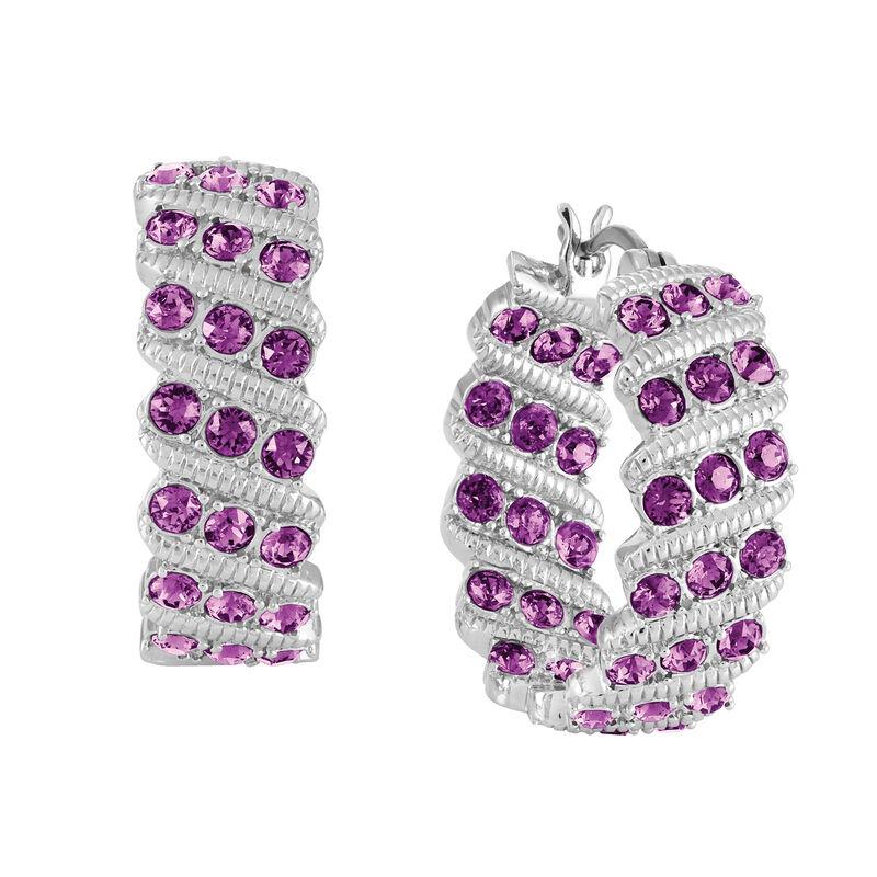 Birthstone Hoop Earrings 6003 0020 b february