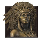 Indian Head Penny Crystal Collection 9342 006 5 6
