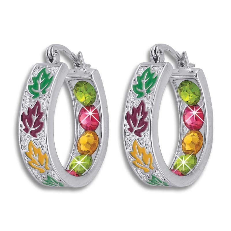 Crystal Celebrations Hoop Earrings 4608 002 4 3