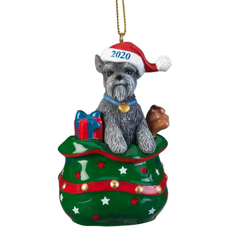 The 2020 Miniature Schnauzer Ornament 6428 026 6 1