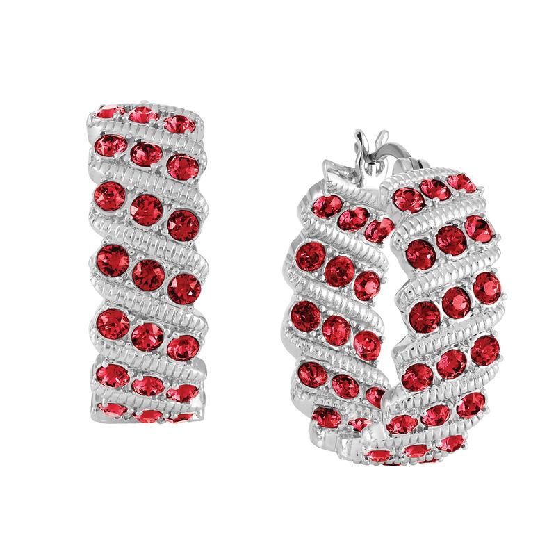 Birthstone Hoop Earrings 6003 0020 a january