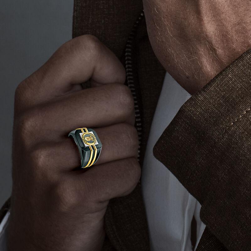 Distinction Military Ring 6670 0030 m model