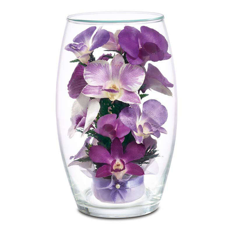 Miracle Orchids 4607 001 7 1