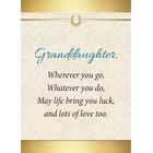 Granddaughter Luck  Love Ruby and Diamond Necklace 2507 001 2 3
