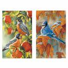 Songbird Seasonal Scent sations 2179 001 9 3