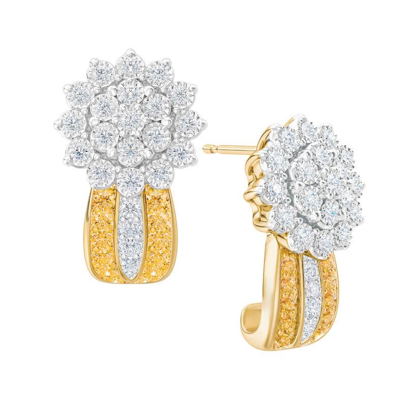 Birthstone Radiance Earrings 5687 0074 k november