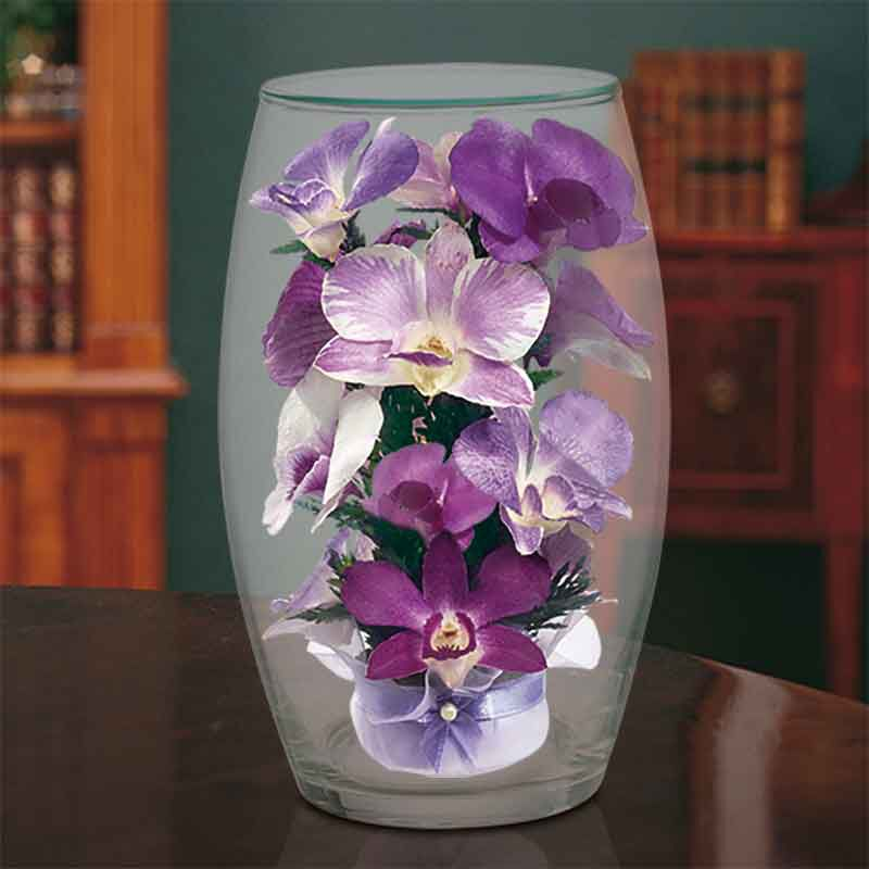 Miracle Orchids 4607 001 7 4