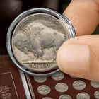 Buffalo Nickels Collection 2915 001 8 2