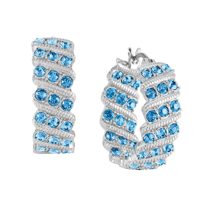 Birthstone Hoop Earrings 6003 0020 l december