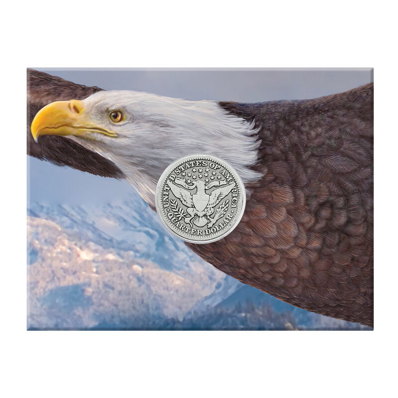 Eagle Silver Coin Collection 10035 0016 c front